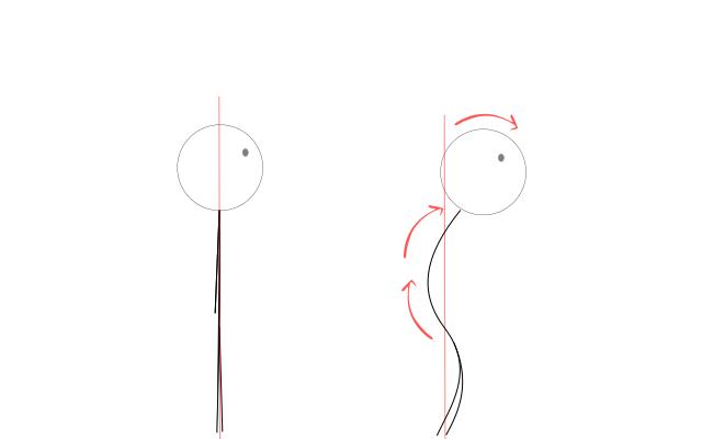 猫背と正しい姿勢